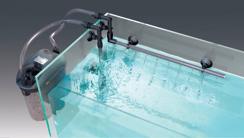 Lampada pl 13 w bianca attacco g 23 2 pin ottima acquario for Filtro per acquario tartarughe